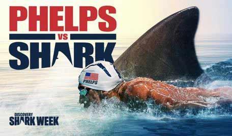 phelps-vs-shark